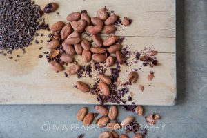 raw cacao beans flat lay photograph